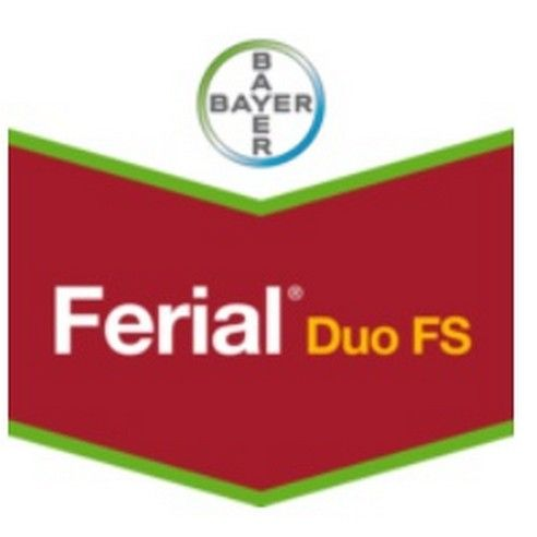 FERIAL DUO PACK PRO