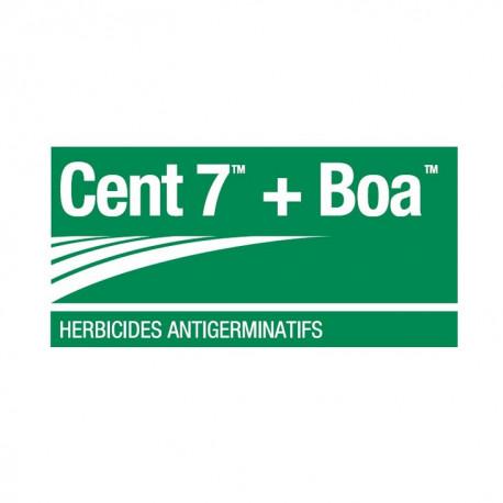 BTS BOA + CENT 7