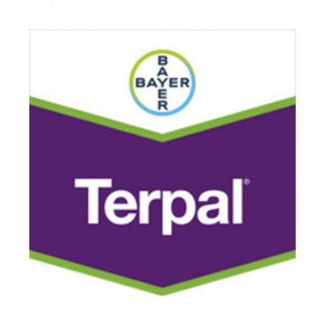 TERPAL