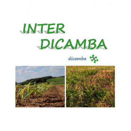 INTER DICAMBA