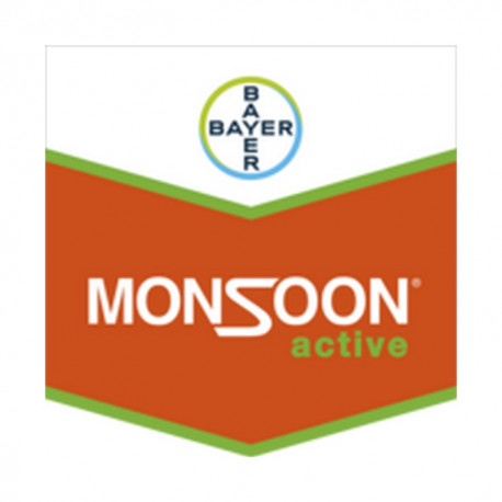 MONSOON ACTIVE