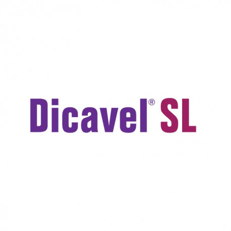 DICAVEL SL