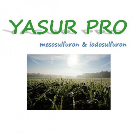 YASUR PRO