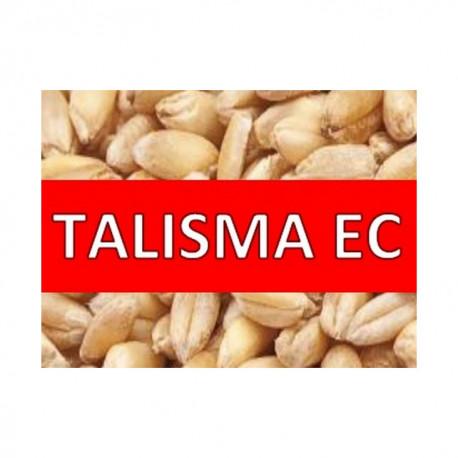 TALISMA EC