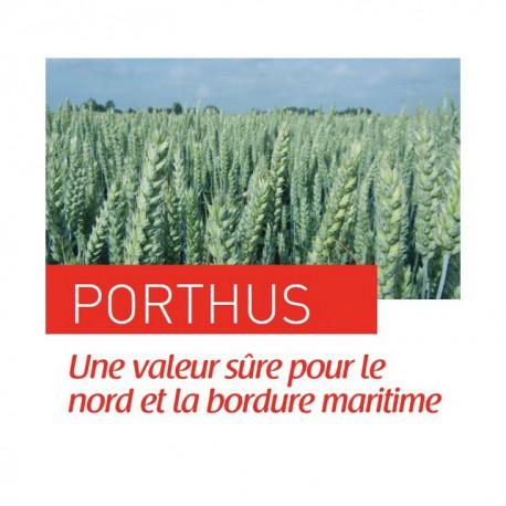 Blé PORTHUS