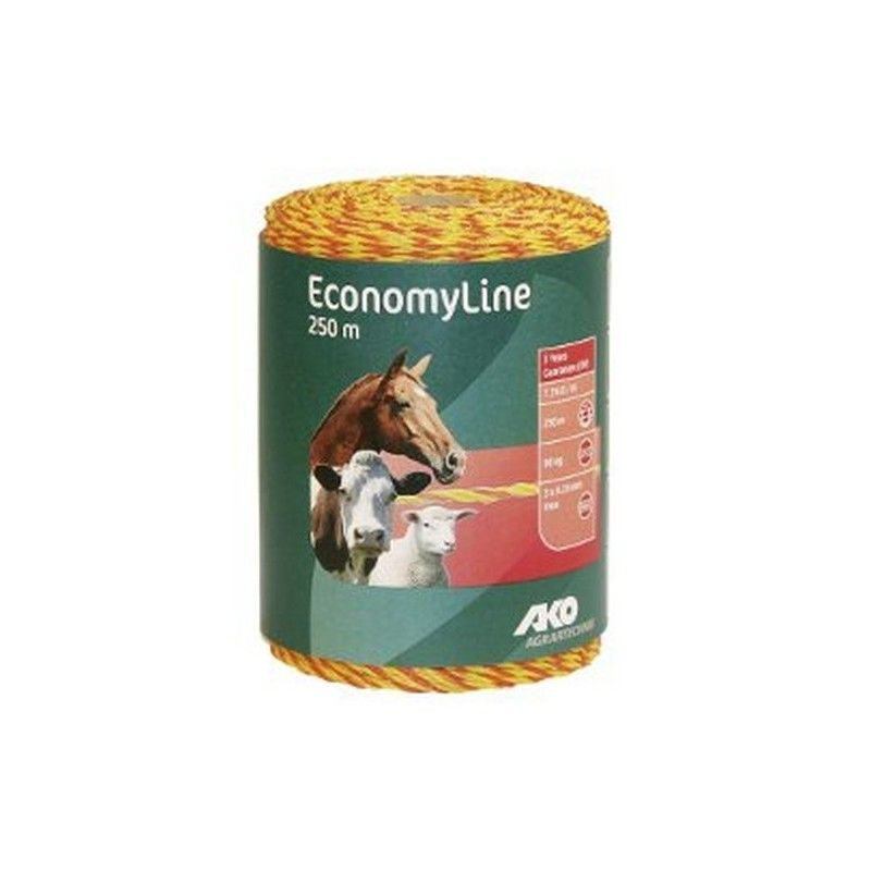 FIL ECONOMY LINE
