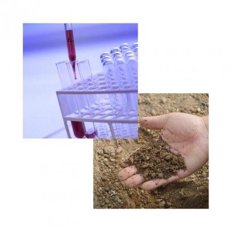 Analyse de terre + Oligos EDTA