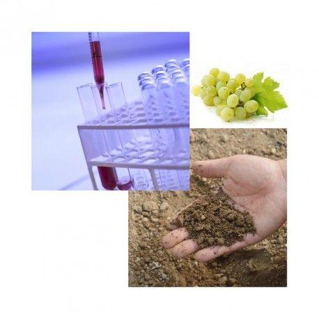 Analyse de terre + Oligos EDTA viticole