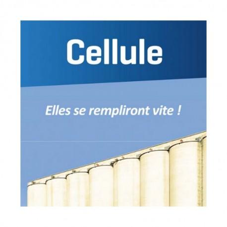 Blé CELLULE